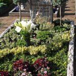 Grob behauener Felsen mit bruchrauher Umrandung betten eine üppige Grabbepflanzung ein.